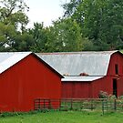 *RED COUNTRY BARNS* by Van Coleman