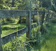 Avon Fence by MShelsby