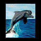 Dolphin by KelseyP77