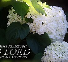 Psalm 111:1 by Julie's Camera Creations <><