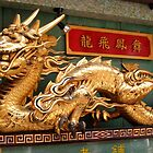 Chinese Dragon in Japan by Greenhorn