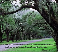 Psalm 3:5-6 by Julie's Camera Creations <><