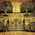 Gates Of... by Catherine Hamilton-Veal  ©