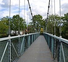 Suspension Bridge over the River Exe by lynn carter