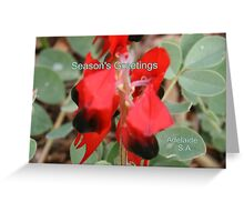Sturt Desert Pea,Season's Greetings from Adelaide,S.A. Greeting Card