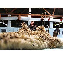 throwing the fleece Photographic Print