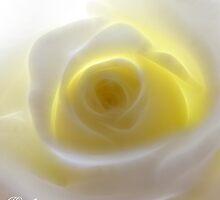 Inner Glow by Julie Everhart