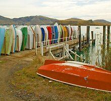 Purau Bay, New Zealand by SusanAdey