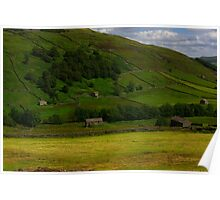 Hillside Barns - Swaledale,North Yorks. Poster