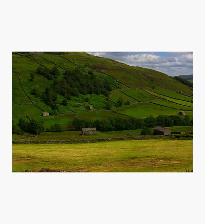 Hillside Barns - Swaledale,North Yorks. Photographic Print