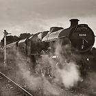 &#x27;Leander&#x27; at Hellifield station by Steve  Liptrot