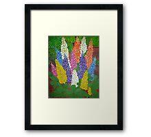 Garden  Lupine Framed Print