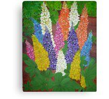 Garden  Lupine Canvas Print