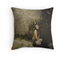 Unknown Throw Pillow