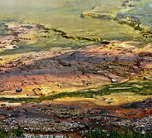 Yellowstone Paint Pots. by Linda Sparks