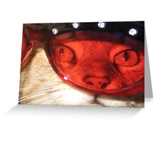 Though Rose Colored Lenses Greeting Card