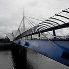 Bells Bridge by lukefarrugia