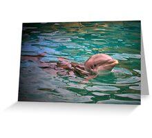 Flipper Greeting Card