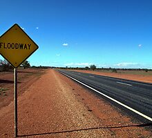 1992 Stuart Highway Floodway by Fred Mitchell