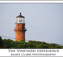 The Vineyard Experience by James Clark