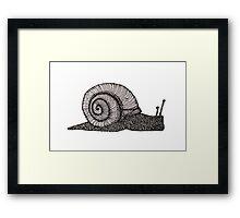 snailure Framed Print