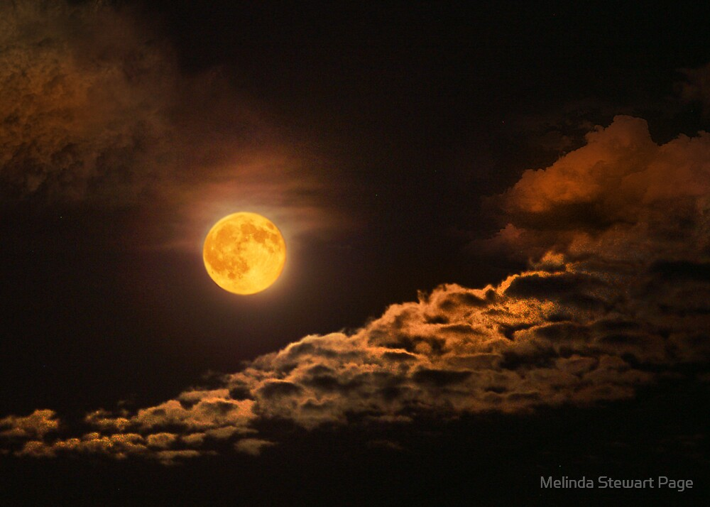 """Moon Over Kentucky"" by Melinda Stewart Page"
