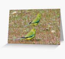 elegant parrots Greeting Card