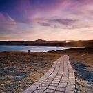 Moonee path  by Michael Howard