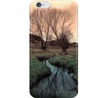 A stream, dry grass, reflections and trees II | waterscape photography iPhone Case/Skin
