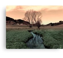 A stream, dry grass, reflections and trees II | waterscape photography Canvas Print