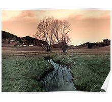 A stream, dry grass, reflections and trees II | waterscape photography Poster
