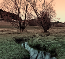 A stream, dry grass, reflections and trees II | waterscape photography Sticker