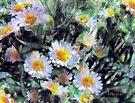 Paintbucket Daisies by RC deWinter