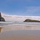 Wharareki Beach, New Zealand by SusanAdey