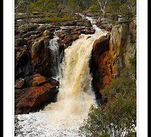 Nigretta Falls by John  Bonney