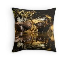 Cheddar Caves Throw Pillow