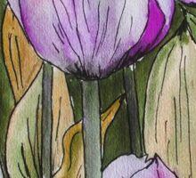 Tulips II Sticker