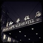 OLD SHANGHAI - Peace Hotel by moderatefanatic
