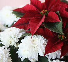 Merry Christmas by hoppmann