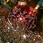 Ornament and lights by hoppmann
