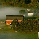 Early morning fog... by Brenda Dow