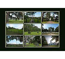 The Green Green Grass of Home Photographic Print