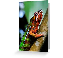 Panther Cameleon Greeting Card