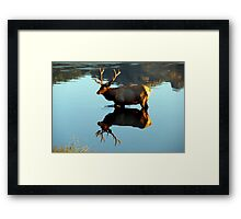 Knee Deep in Stillness Framed Print