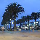 Hermosa Beach, CA by Gloria Abbey