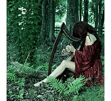 Heart Song Photographic Print