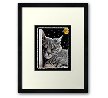 Catnap - Grey Tabby Cat  Framed Print