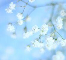 The flowergirl by Angela King-Jones