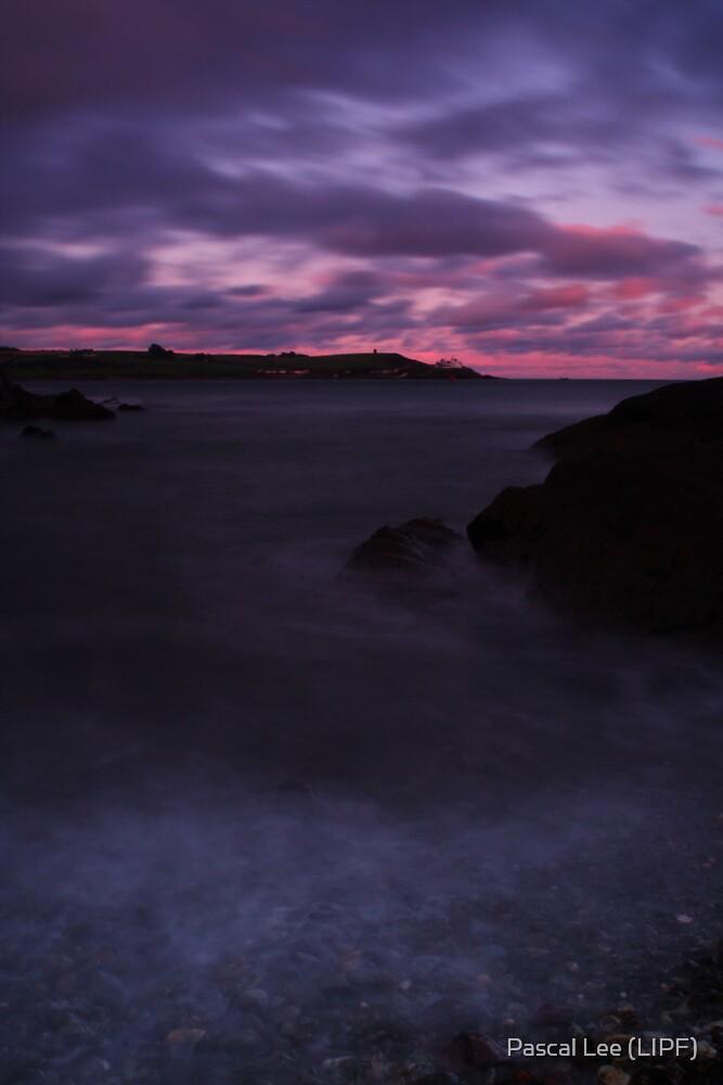 Rocky Beach by Pascal Lee (LIPF)