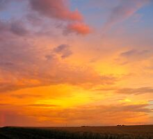 Sunset on the Barley by Kristi Bryant